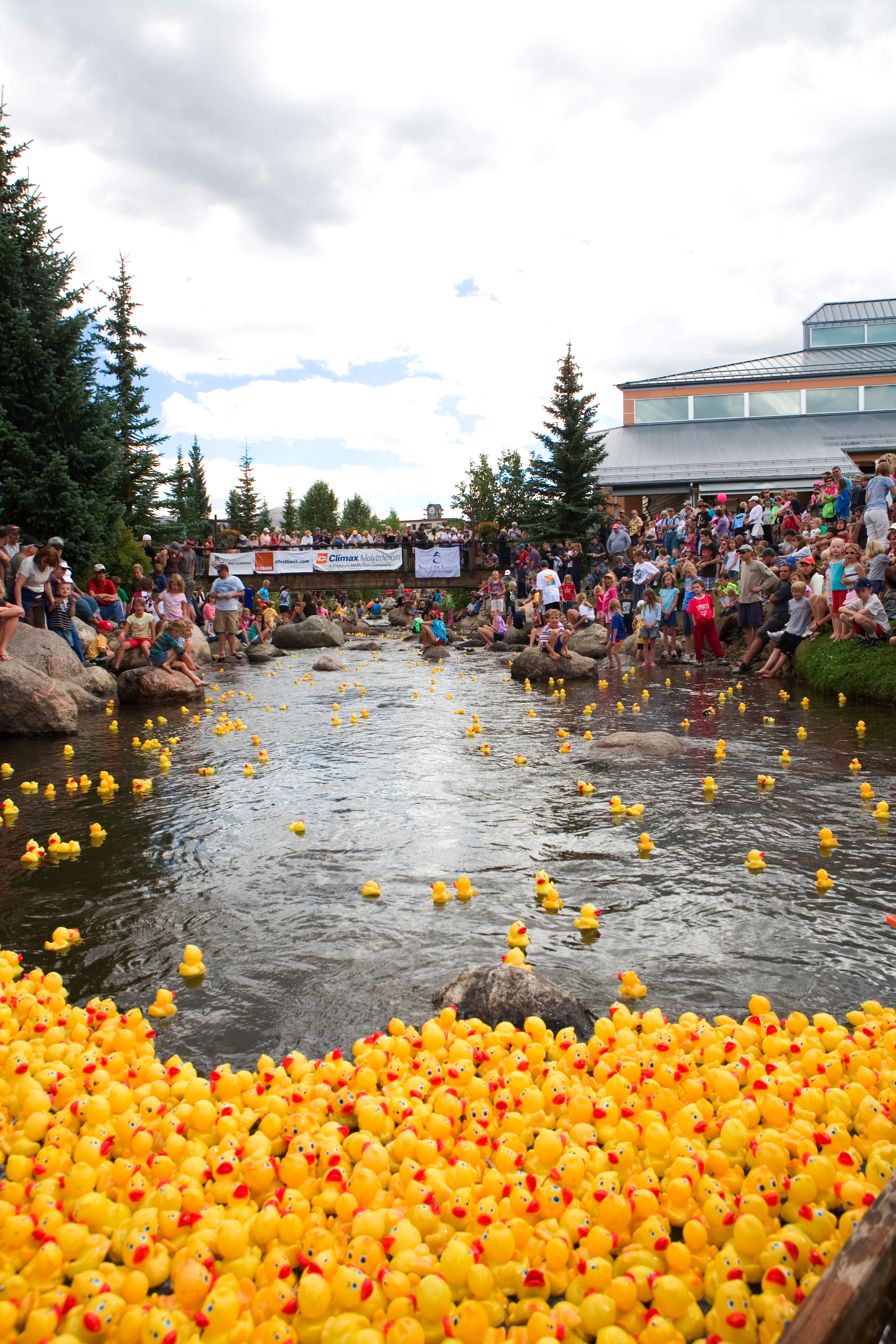 The Rubber Duck Race in Breckenridge