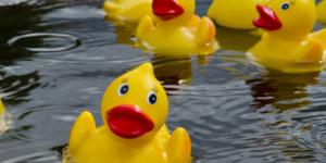 31st Annual Great Rubber Duck Race @ Riverwalk