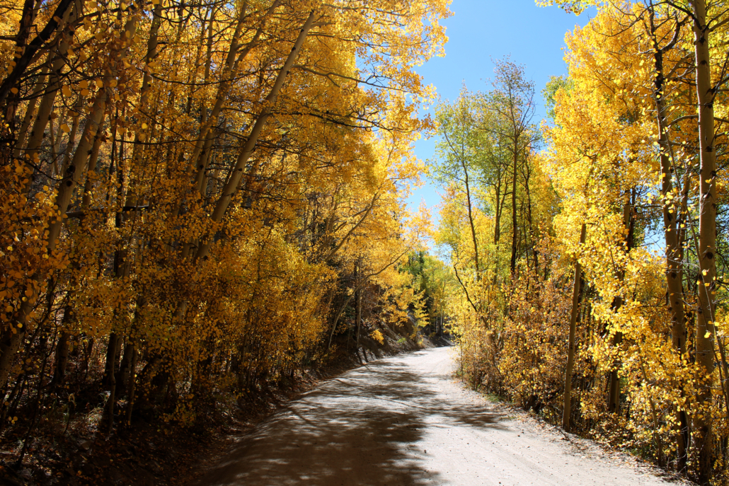Boreas Pass | Photo: Brittany DeGraff