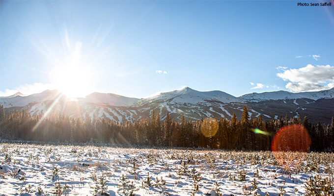 Breckenridge Mount Baldy Road - Top 5 Photo Spots