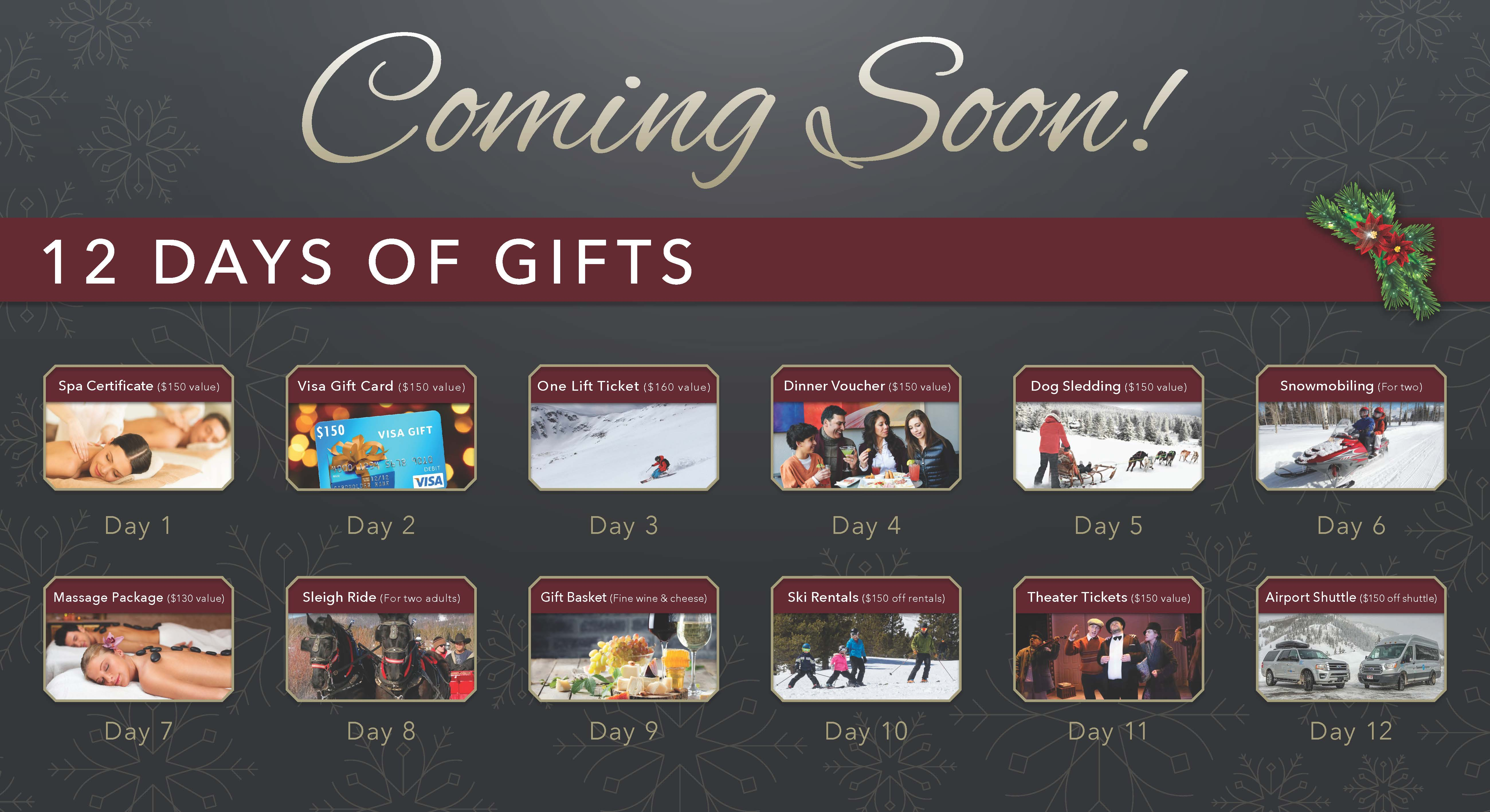 12 Days of Gifts Coming Soon!